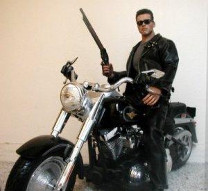 harley davidson fatboy terminator bike photos